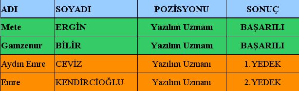bilisim-personeli-2014